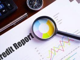 Company Credit Report